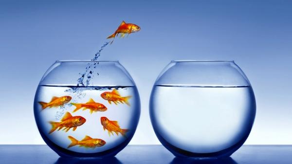 ¿Cómo gestionas tus procesos de cambio?