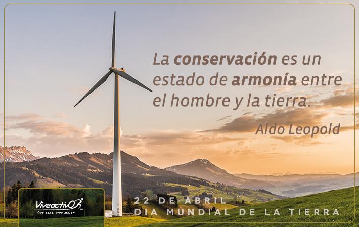 """""""Todos los días son el Día de la Tierra"""": Consejos para cuidar el planeta"""